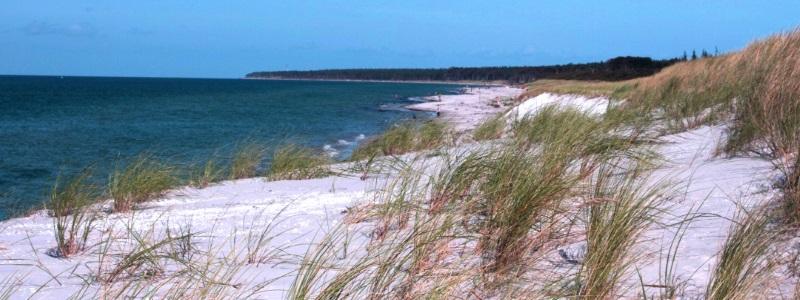 Blick auf einen Strand an der Ostsee.
